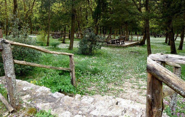 bosco-alcamo-3
