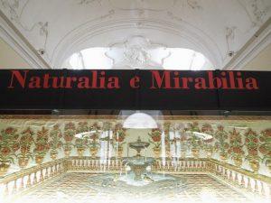 museo-trapani-9