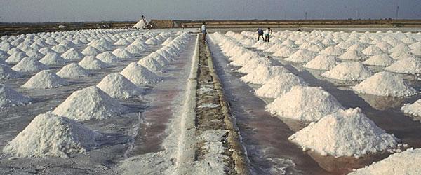 Il sale marino di Trapani